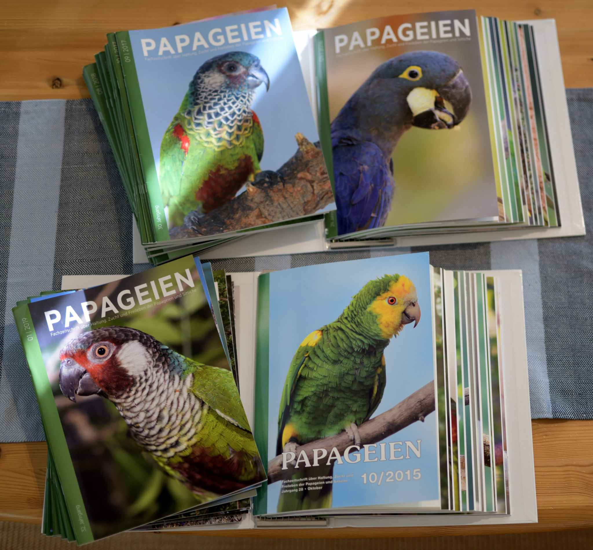 Papageien 9/2015-8/2019